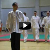 Laohu wushu club - Kung fu demonstration - BiH Tuzla 2009